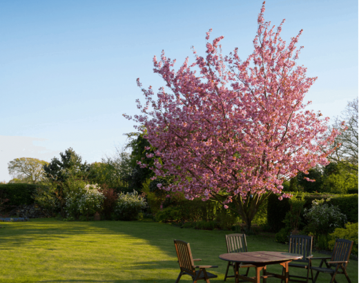 3 improvements to transform your outdoor space